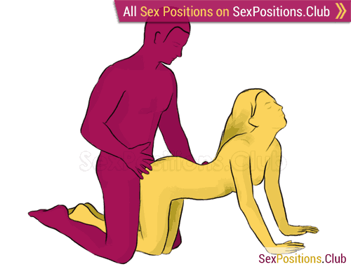 Sex position #17 - Basset Hound. (doggy style, from behind, kneeling, rear entry). Kamasutra - Photo, picture, image