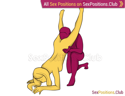 Sex position #464 - Hood. (oral sex, cunnilingus, standing, from behind). Kamasutra - Photo, picture, image