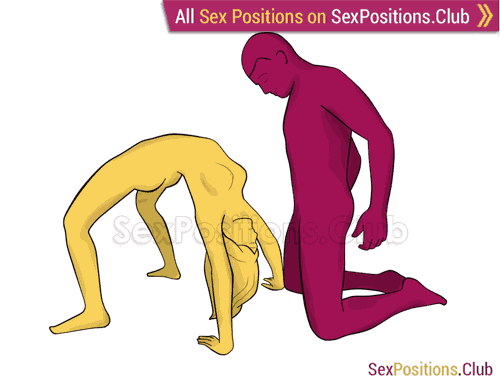 Sex position #385 - Сrazy blowjob. (oral sex, blowjob, kneeling). Kamasutra - Photo, picture, image