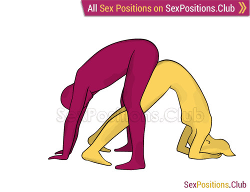 Sex position #279 - Russian roulette. (doggy style, from behind, rear entry, reverse, standing). Kamasutra - Photo, picture, image