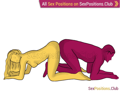 Sex position #256 - Reverse doggy. (doggy style, from behind, rear entry, reverse, kneeling). Kamasutra - Photo, picture, image